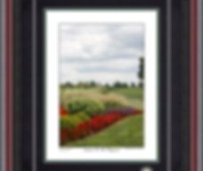 Vertical Photographs By Price Maples Sr. At Price Maples Sr. Art & Framing Custom Frame Shop And Art Gallery In Lexington, Ky