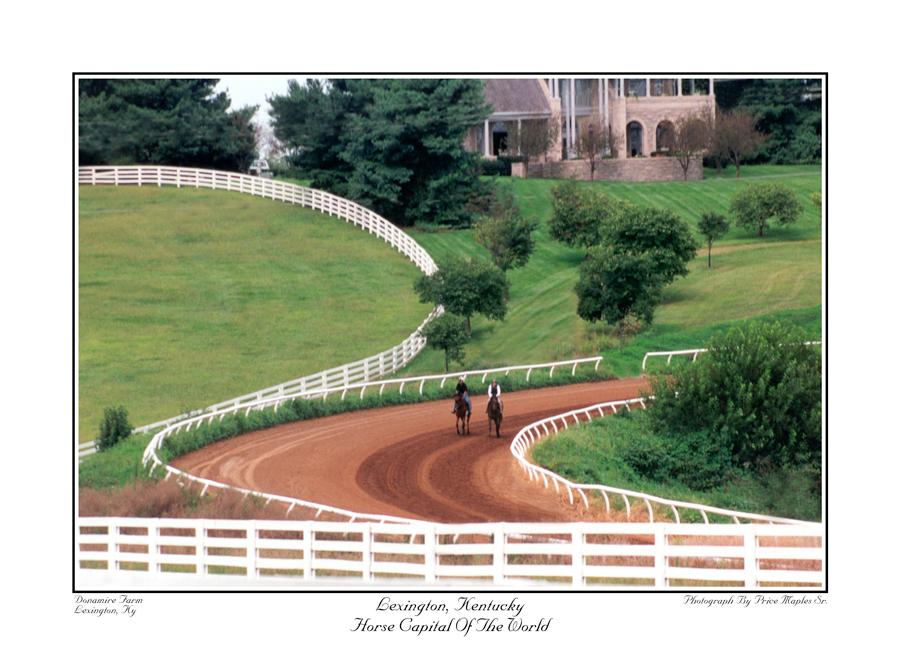 Horse Capital