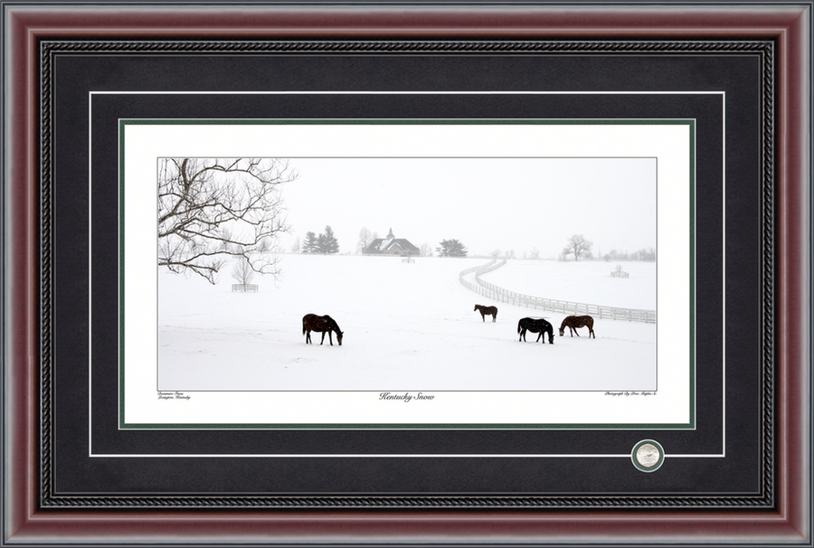 Kentucky Snow Panoramic Photograph By Price Maples Sr. Framed By Price Maples Sr. Art & Framing Custom Frame Shop And Art Gallery In Lexington, Ky