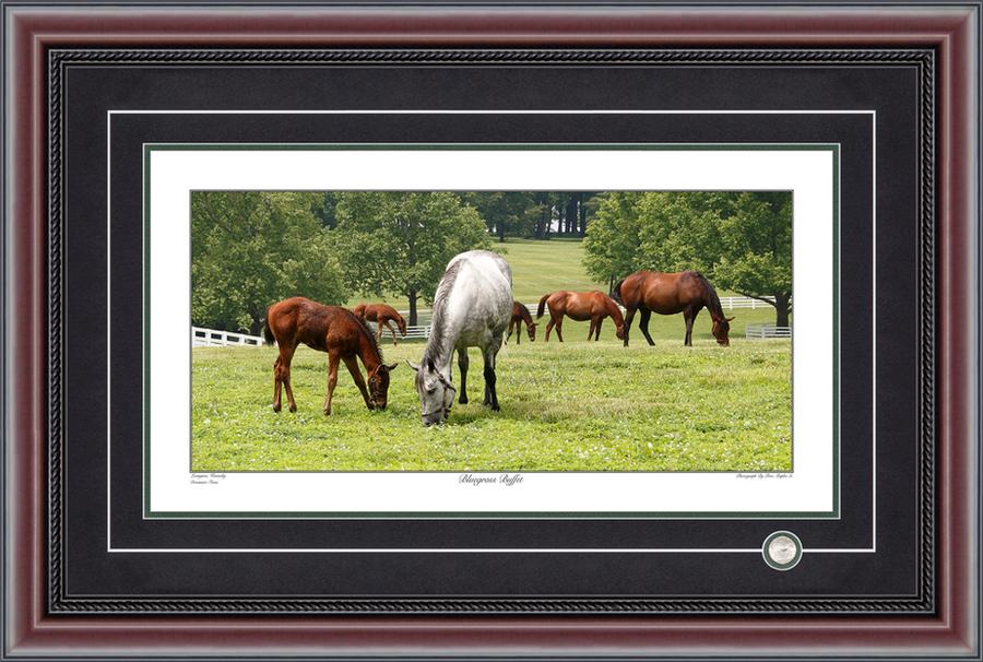 Bluegrass Buffet Panoramic Photograph By Price Maples Sr. Framed By Price Maples Sr. Art & Framing Custom Frame Shop And Art Gallery In Lexington, Ky