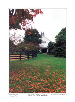 Fall At Hill-N-Dale