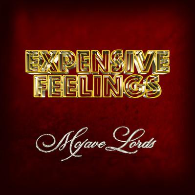 Expensive Feelings