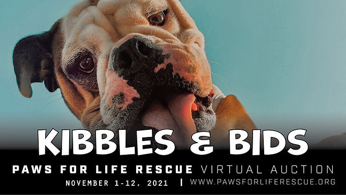 Kibbles+Bids_eventcover15.jpg