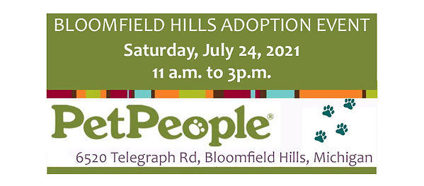 adoption event.jpg