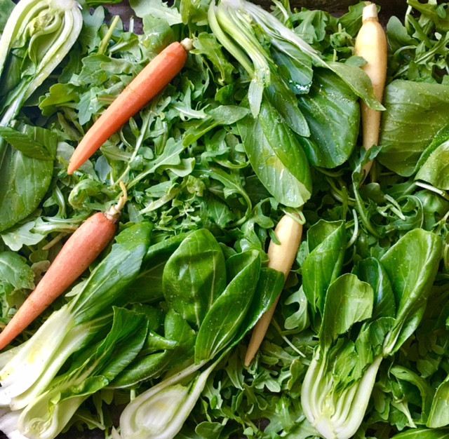 carrots and bok choy ready for roasting
