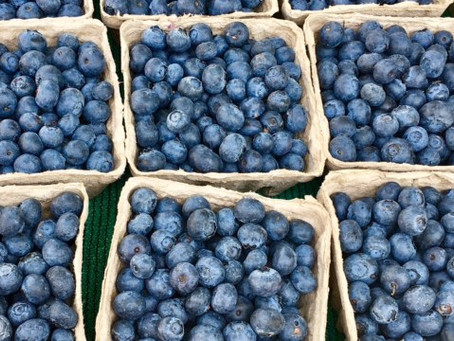 Why are berries brain food?