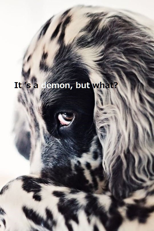 鬼犬.jpg