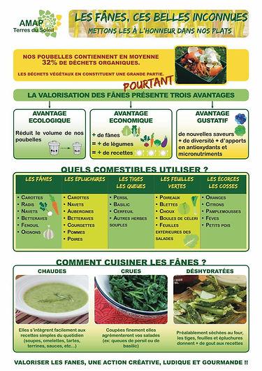 Fanes cuisine.jpg