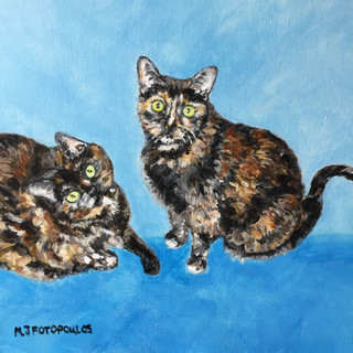 Kathy's Cats