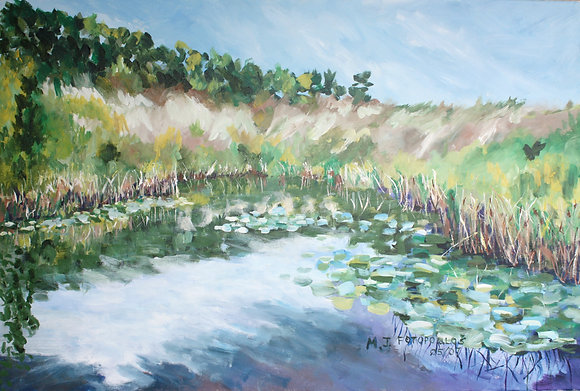 Ridge Beyond the Pond