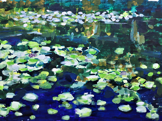 Lily Pads in June