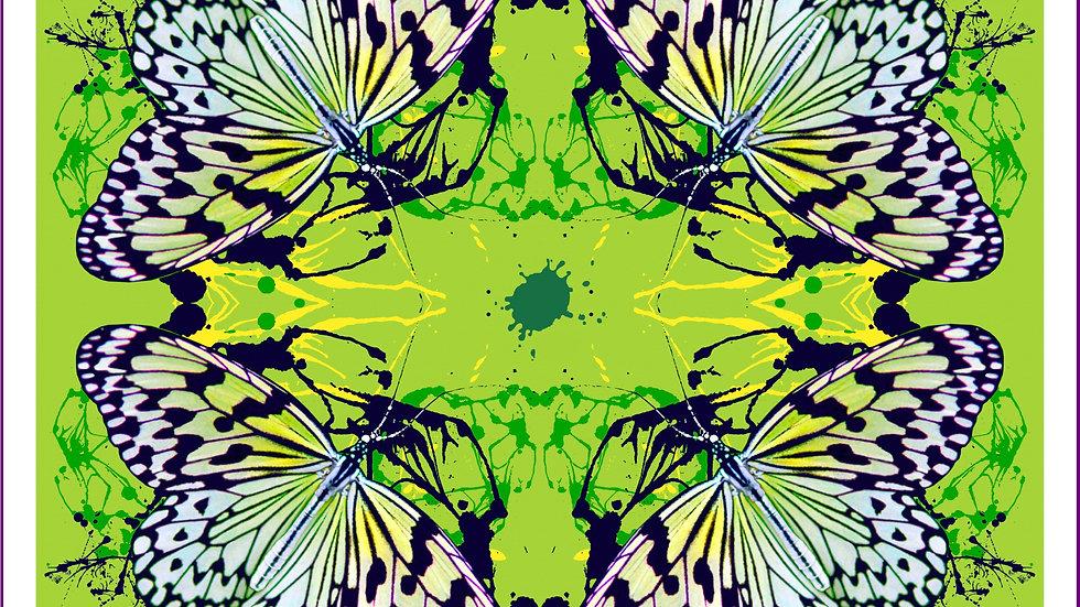 Metamorphosis Fine Art Print