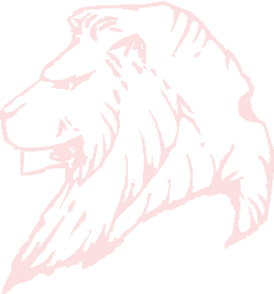 lion1_edited.png