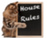 cat-house-rules.png
