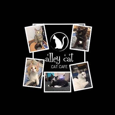 alley cat logo and residents edit.JPG