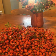Rosehips still going strong #foraged #wildfood