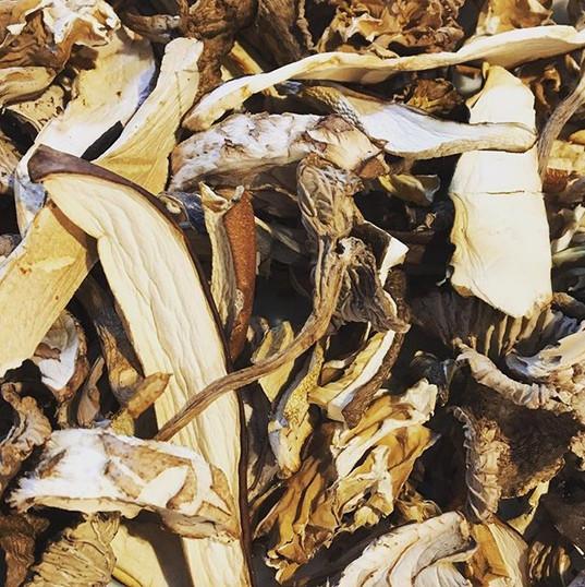 A fab mix of wild mushrooms for tonight's casserole.jpg