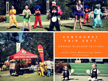 A Sunday Funday at Kenthurst Fair - photo album