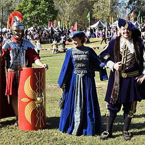 Medieval Faire, Doonside