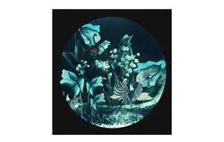 'The Underwater Night Garden' 2019