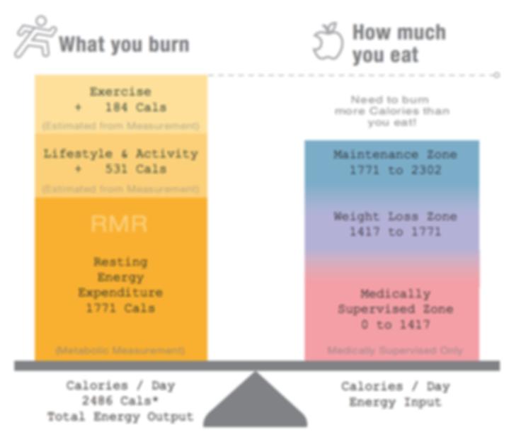 Metabolism RMR-2.png
