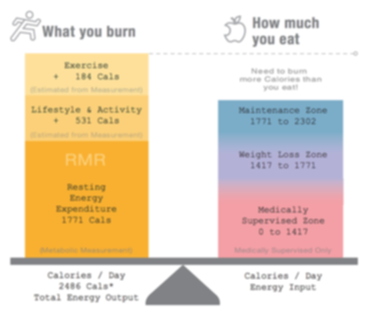 Metabolism, resting metabolic rate, calories determination for weight loss
