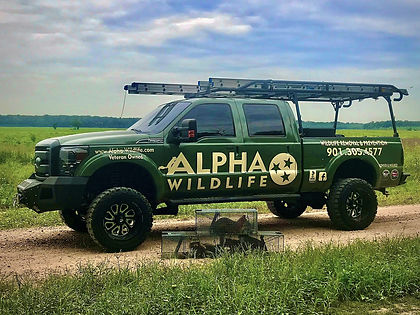 truck - animal removal in knoxville - ra