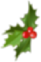 Christmas_Mistletoe_Picture.png