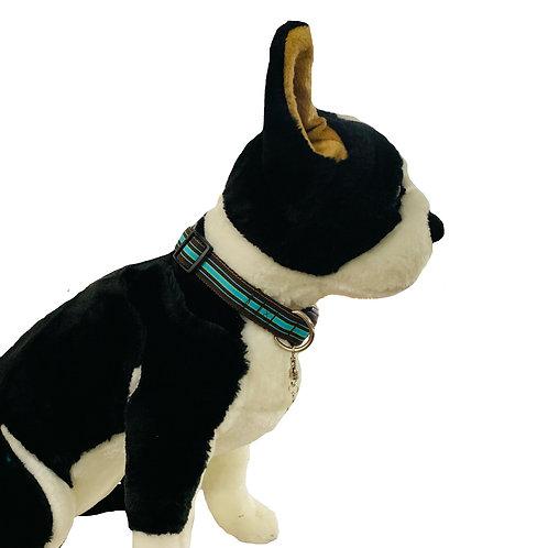 Blue and Brown Stripe Adjustable Dog Collar