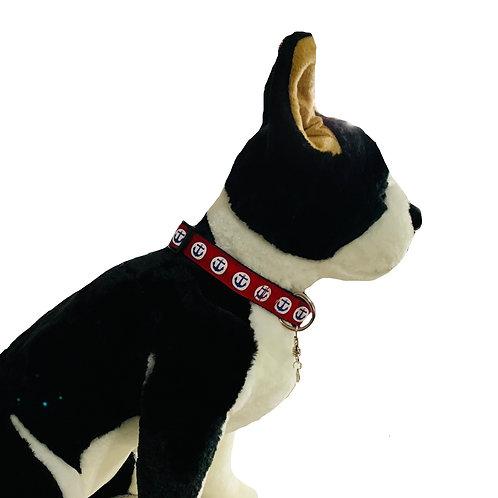 Anchors Away Adjustable Dog Collar