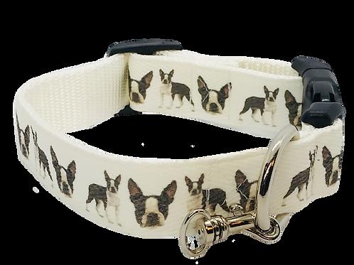 Boston Terrier Adjustable Dog Collar, White