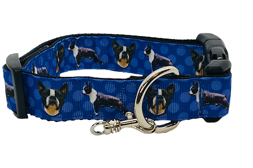 Boston Terrier Adjustable Dog Collar, Blue