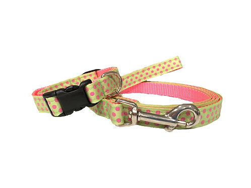 Apple Green Swiss Dots Adjustable Dog Collar & Leash Combo