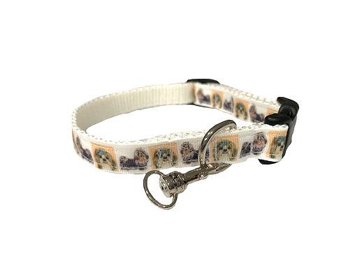 Shih Tzu Adjustable Dog Collar