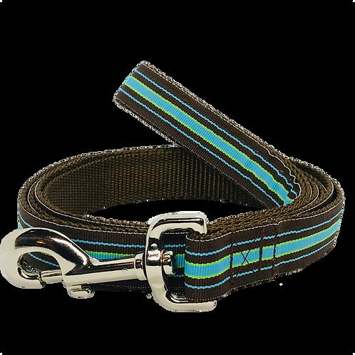 Blue and Brown Stripe Dog Leash