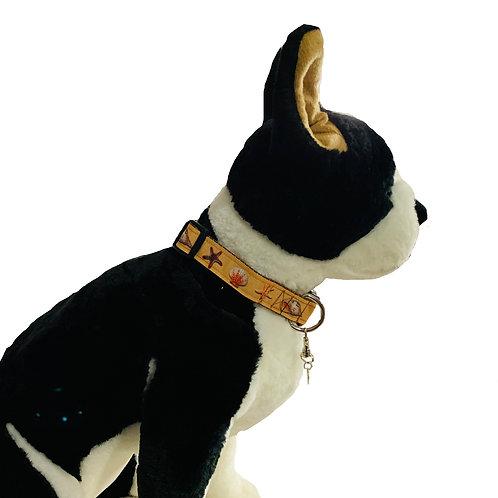 Day at the Beach Seashells Adjustable Dog Collar