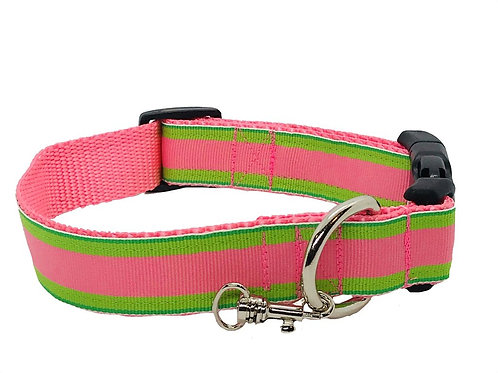 Pink and Green Stripe Adjustable Dog Collar