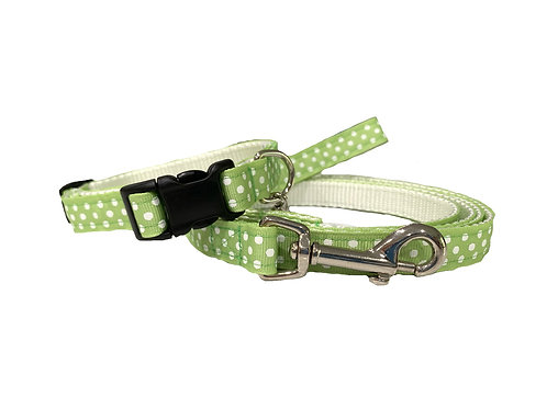 Mint Swiss Dots Adjustable Dog Collar & Leash Combo