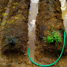 Traditionally, a river or a stream would be diverted to fill-up the troughs. Since we did not have access to a large body of water, we used a hose that transported water from a well on the property.
