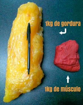 1-kg-de-gordura.jpg