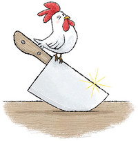 El pollastre de festes
