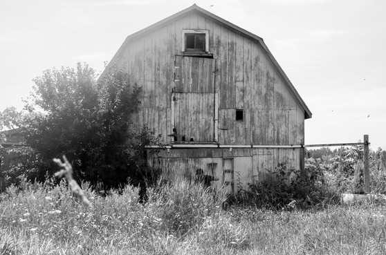 Barn - by Theo
