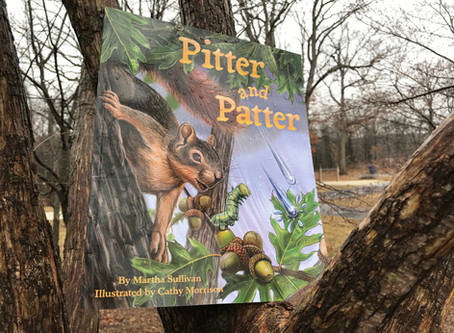 Naturalist Suzy's Book Pick: 'Pitter and Patter'