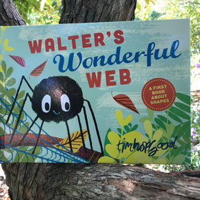 Naturalist Suzy's Book Pick: 'Walter's Wonderful Web'