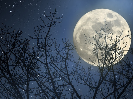 Full Moon Making You Act A Little Crazy? Think Again