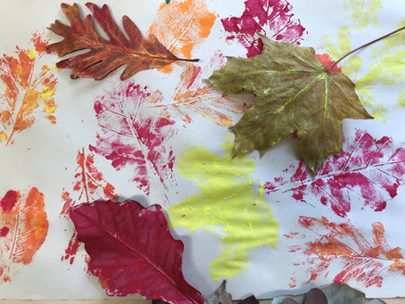 Use Things Found in Nature To Decorate for Holidays
