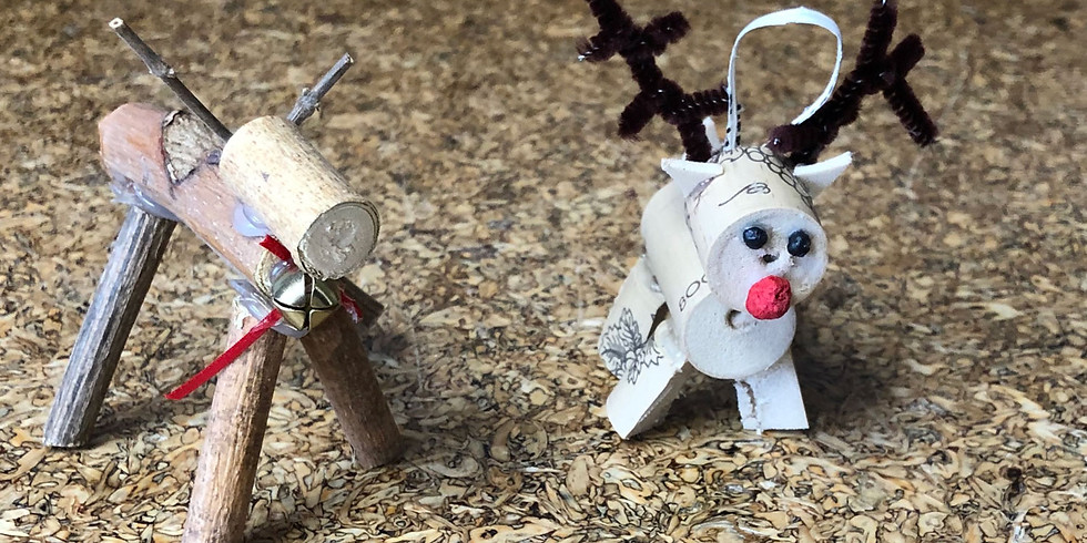 Animals in Winter: Hike and Craft