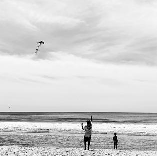 Go Fly a Kite (Hon. Mention)
