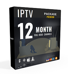 12 month-subscription (2).png