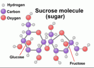 Chemical form of sucrose